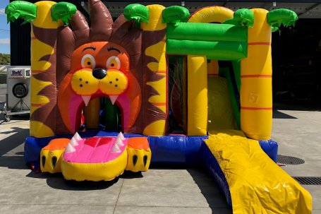Bouncy castle jungle lion